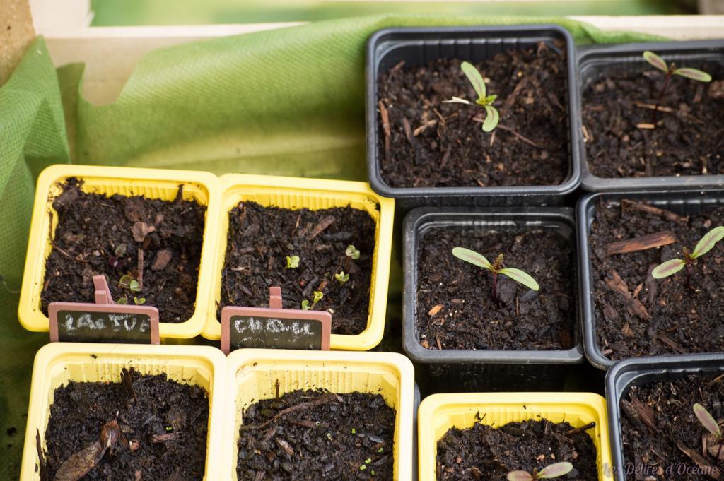 Présentation de la permaculture,biodiversité