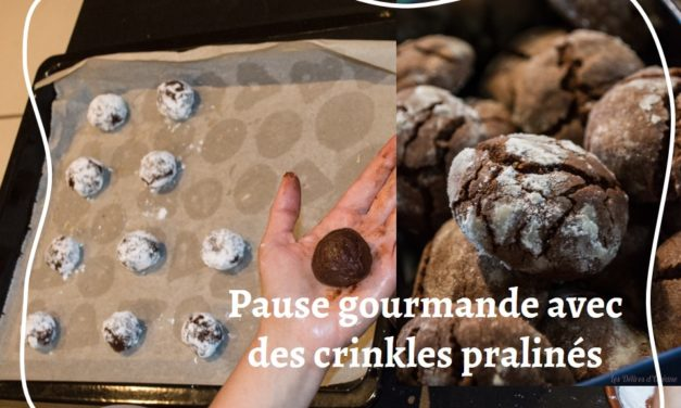 Des crinkles pralinés tout chocolat pour une pause gourmande !