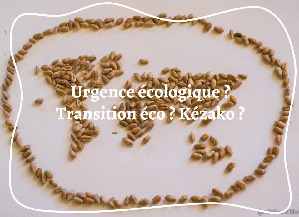 urgence écologique transition écologique