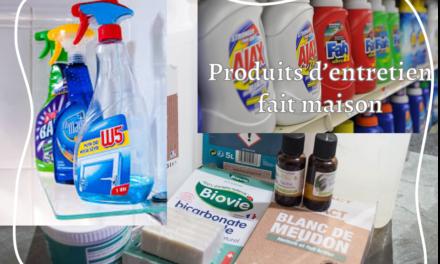 Produits ménagers fait maison : écologiques, economiques mais efficace !
