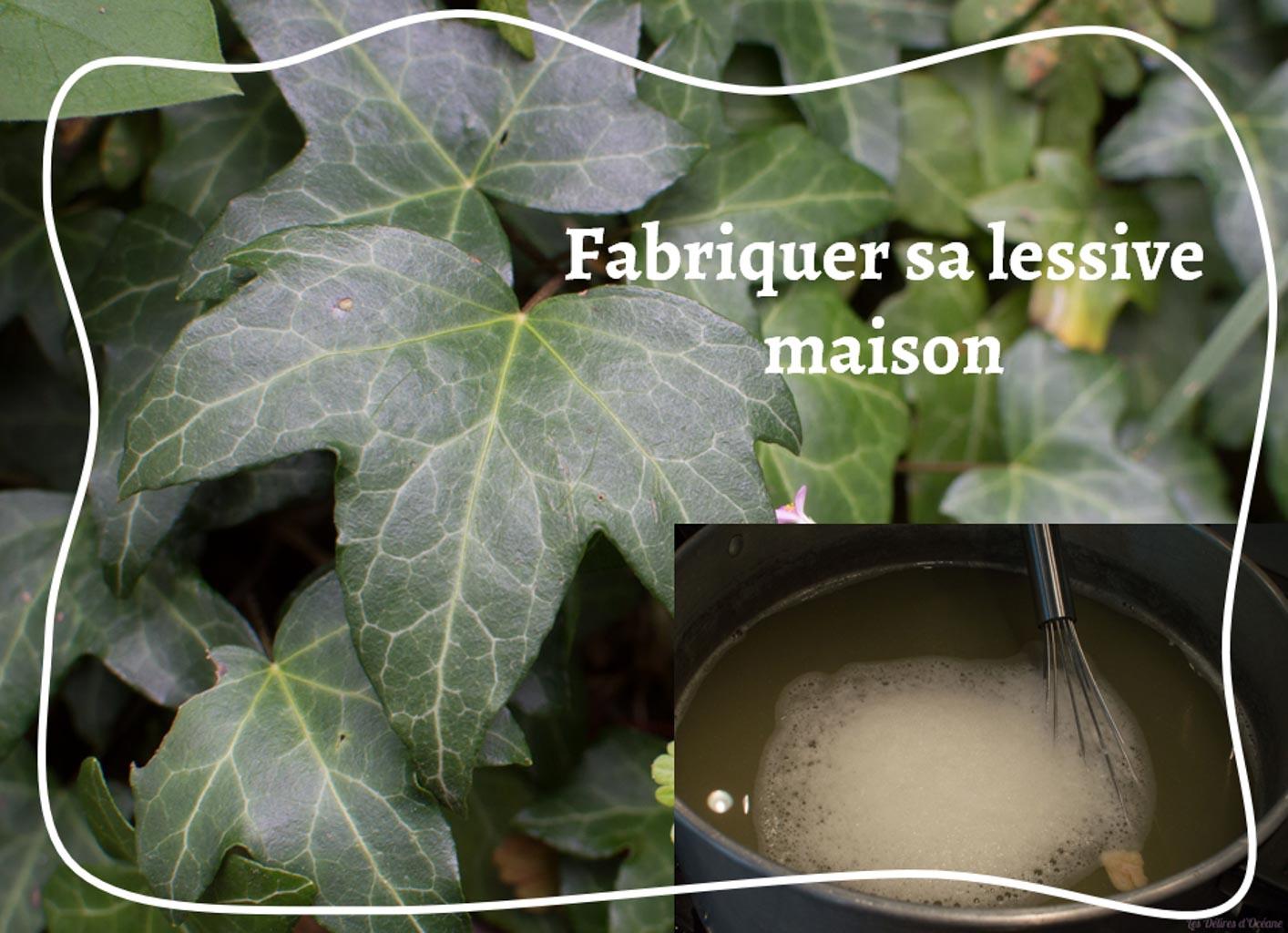lierre lessive naturelle fait maison lierre grimpant utilisation hedera helix bicarbonate et savon de marseille