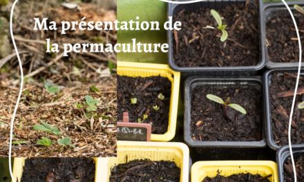 Ma présentation  de la permaculture